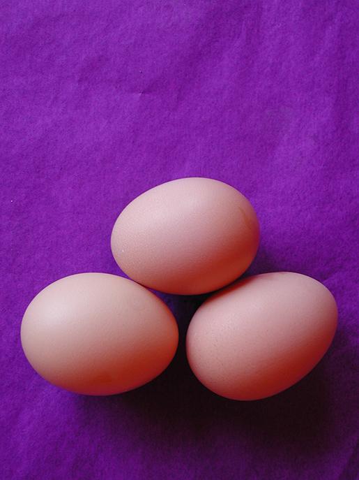 por mis huevos